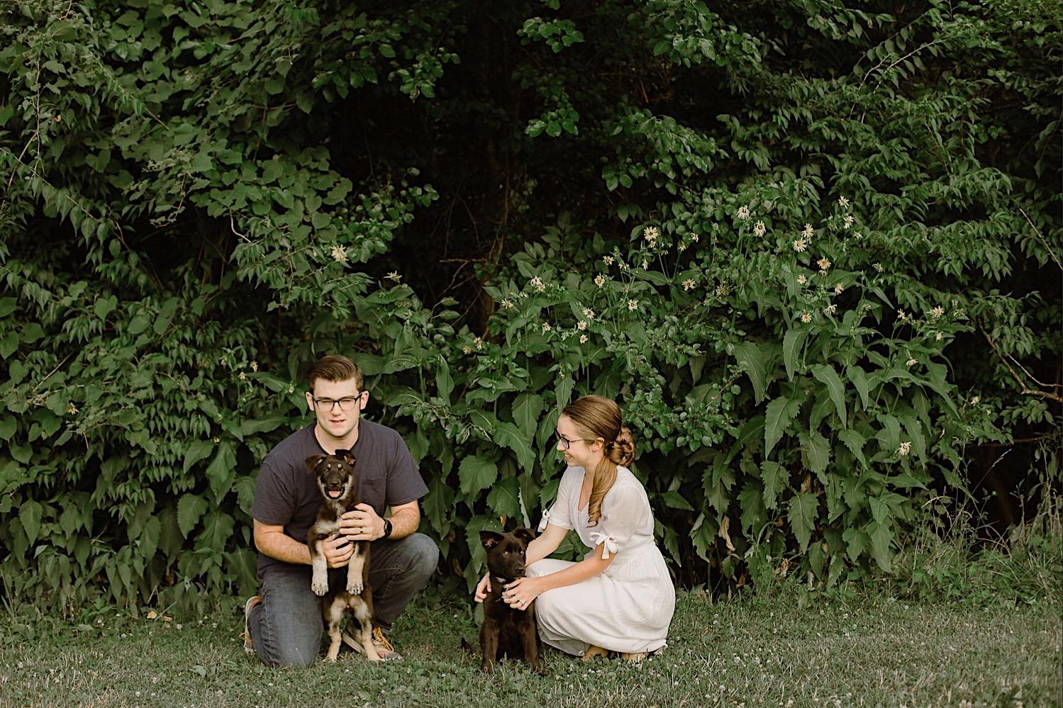 1_Pet_Photography_Photographer_dog_Indianapolis.jpg
