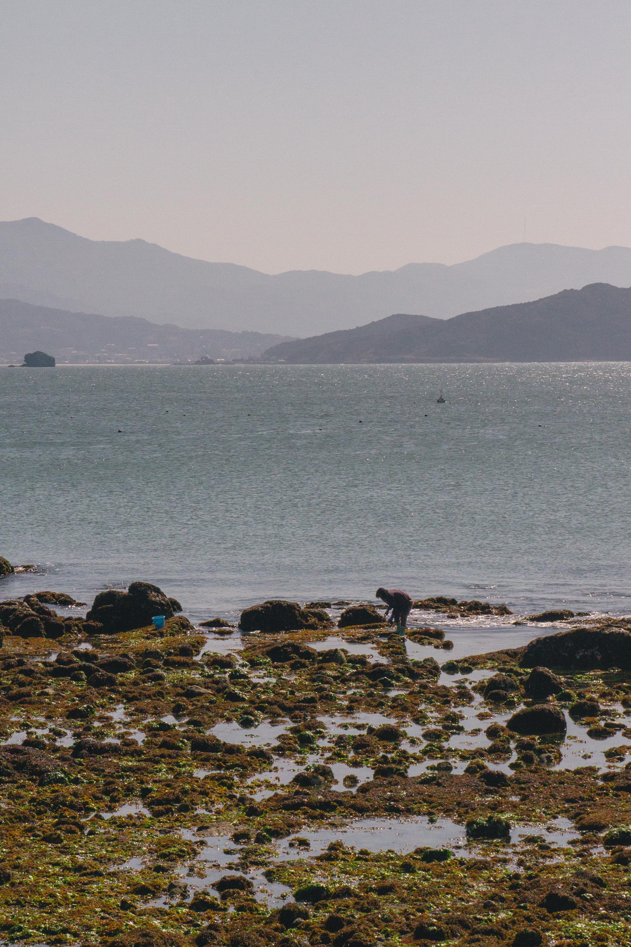 Fisherman | Shikanoshima Island