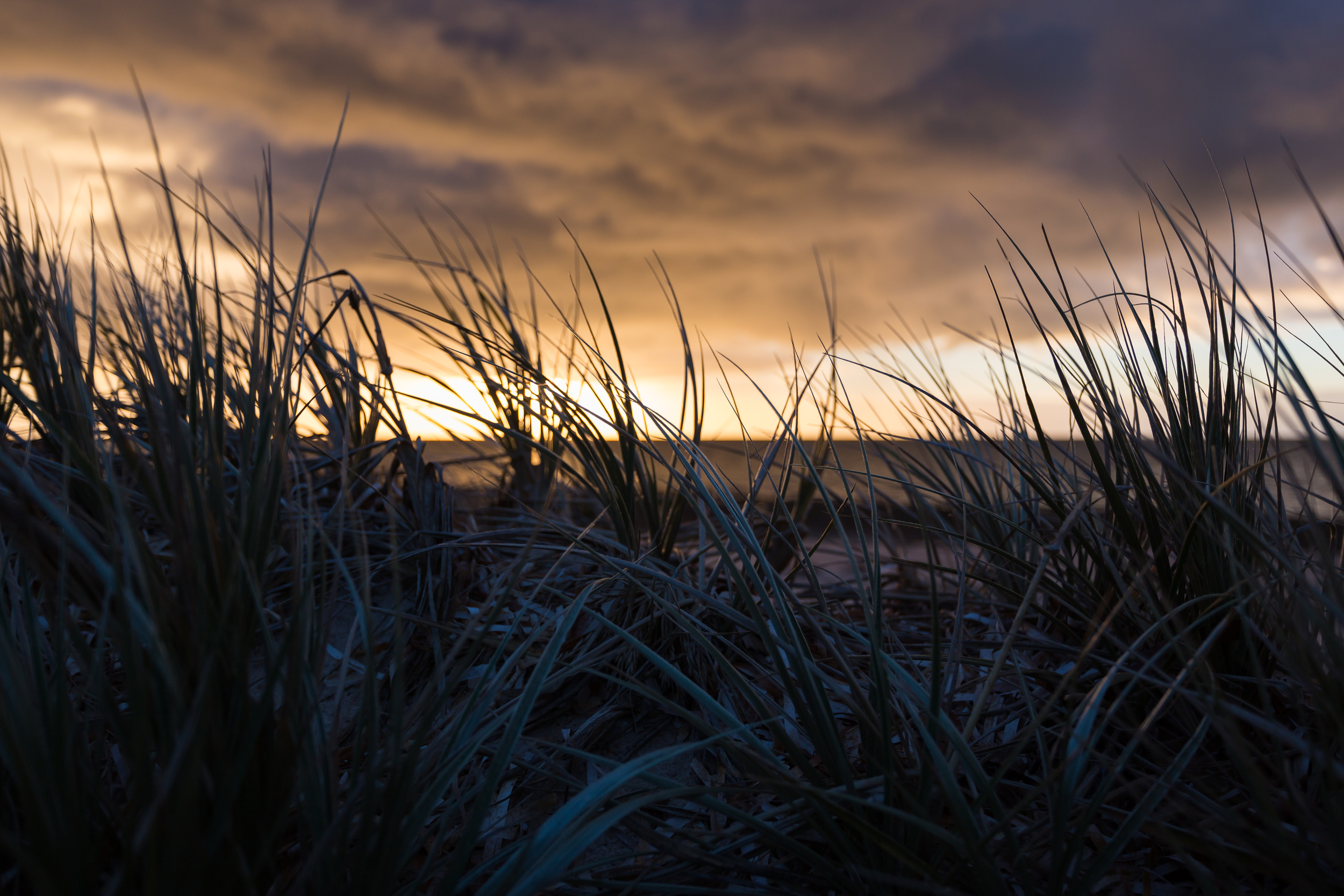 Shack Sunrise 20.jpg