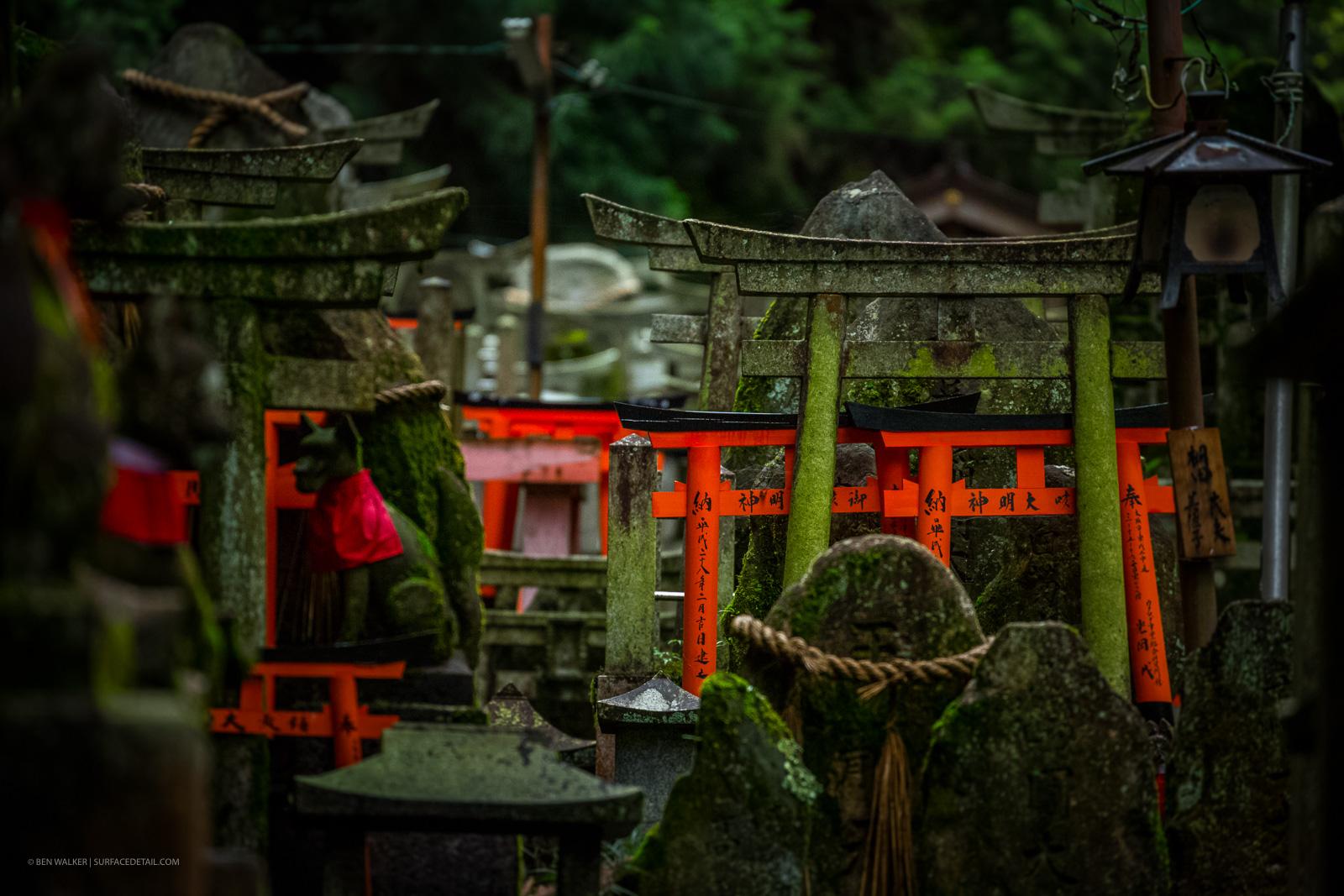 japan_nature_20160511_14.jpg