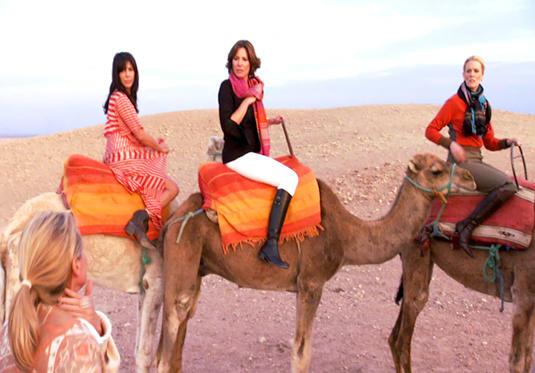 rhony-camels