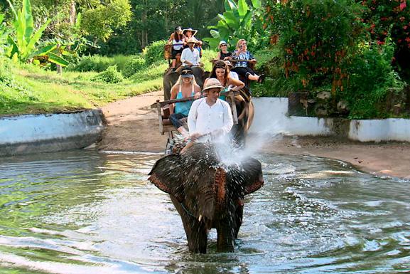 rhoc-bali-elephants