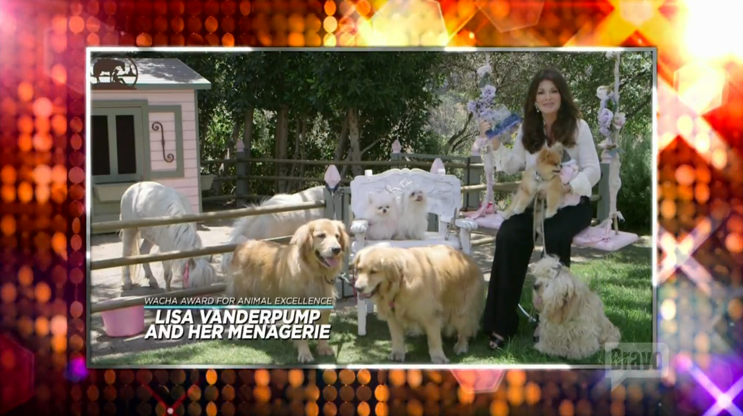 bravo-awards-lisa-vanderpump-menagerie