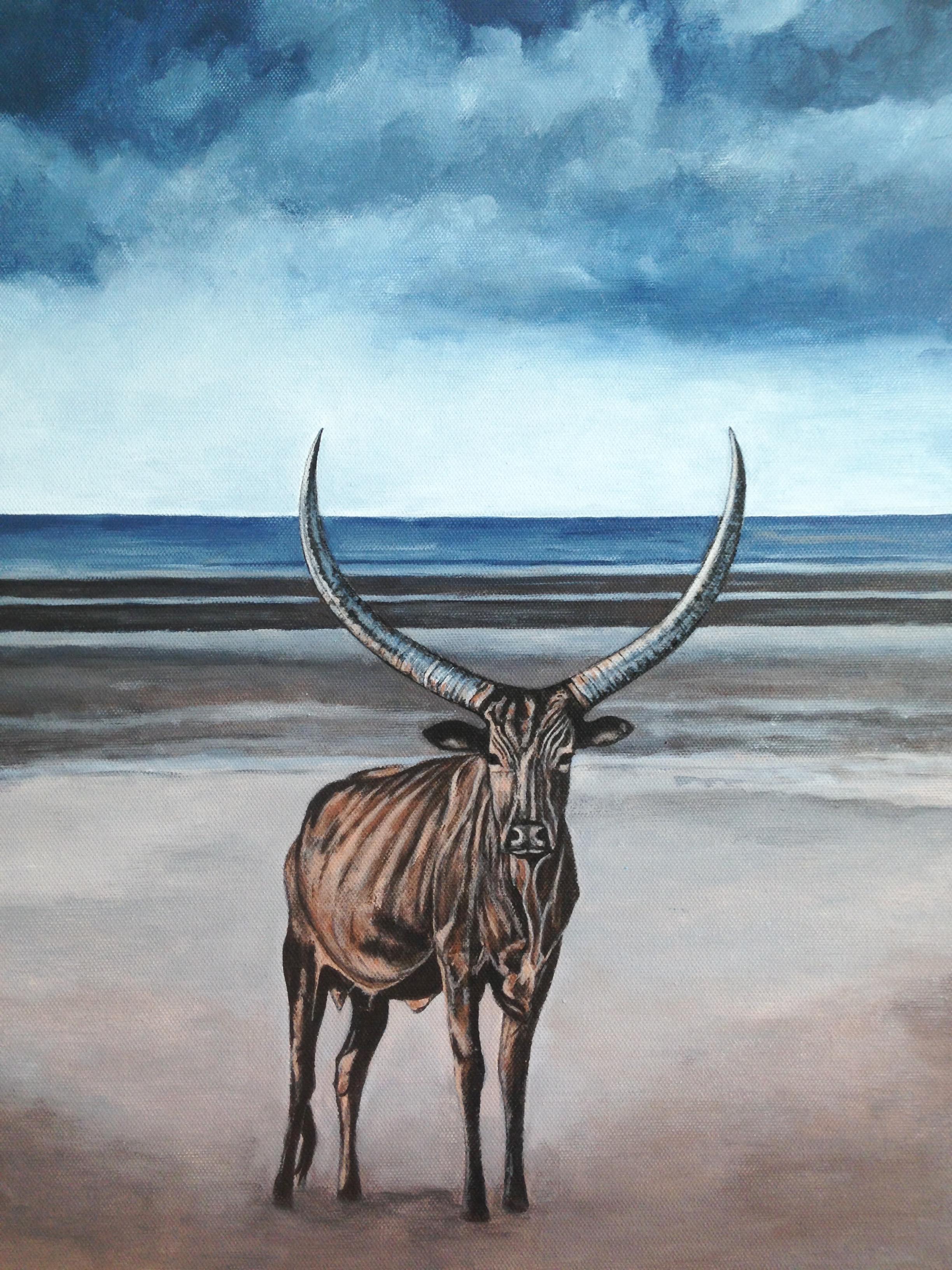 zebu on the beach, 14''x18'', acrylic on canvas, 2016