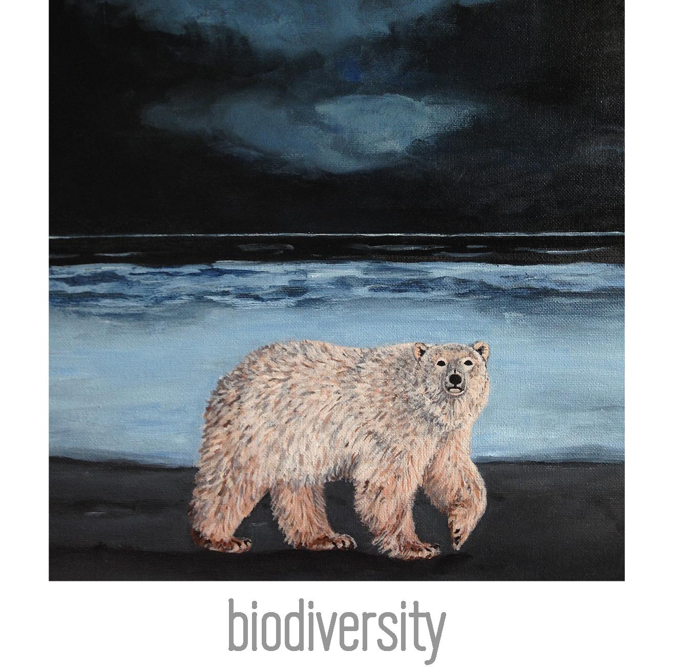 biodiversity-index.jpg