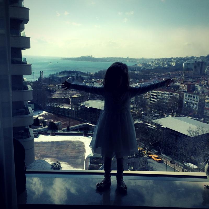 Conrad Hotel Istanbul Bosphorus view