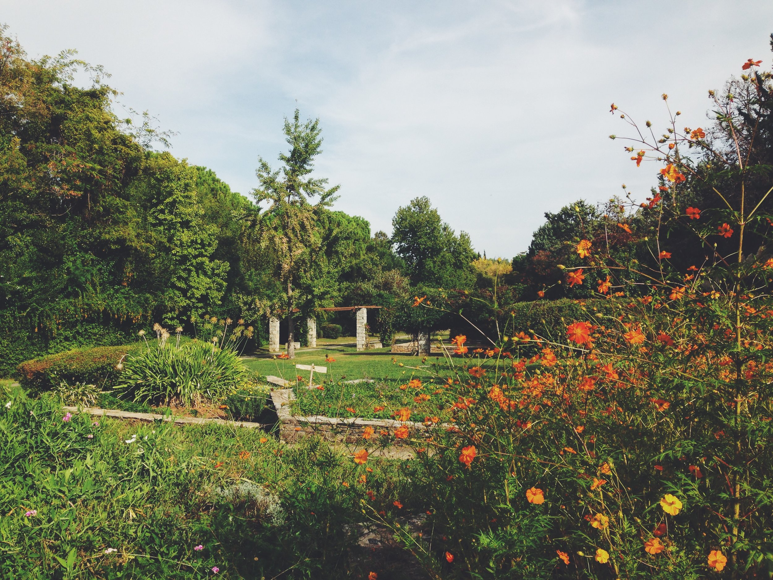 Escape the city at the Diomedous Botanical Garden (Picture by Katherine Poseidon)