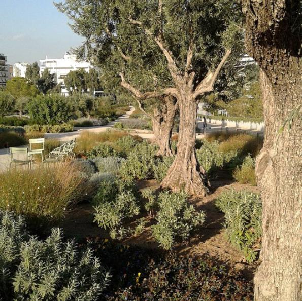Gardens at the Stavros Niarchos Park (Picture via Instagram/mspyrs)