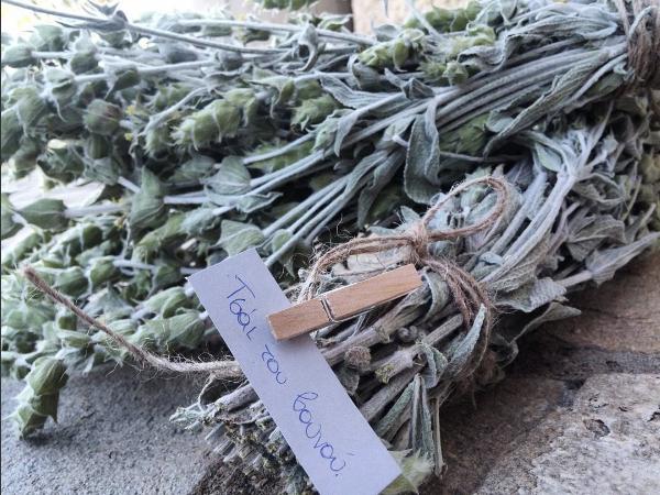 Greek mountain tea, a classic grandmother's remedy (Photo @tsai_tou_vounou / Instagram)