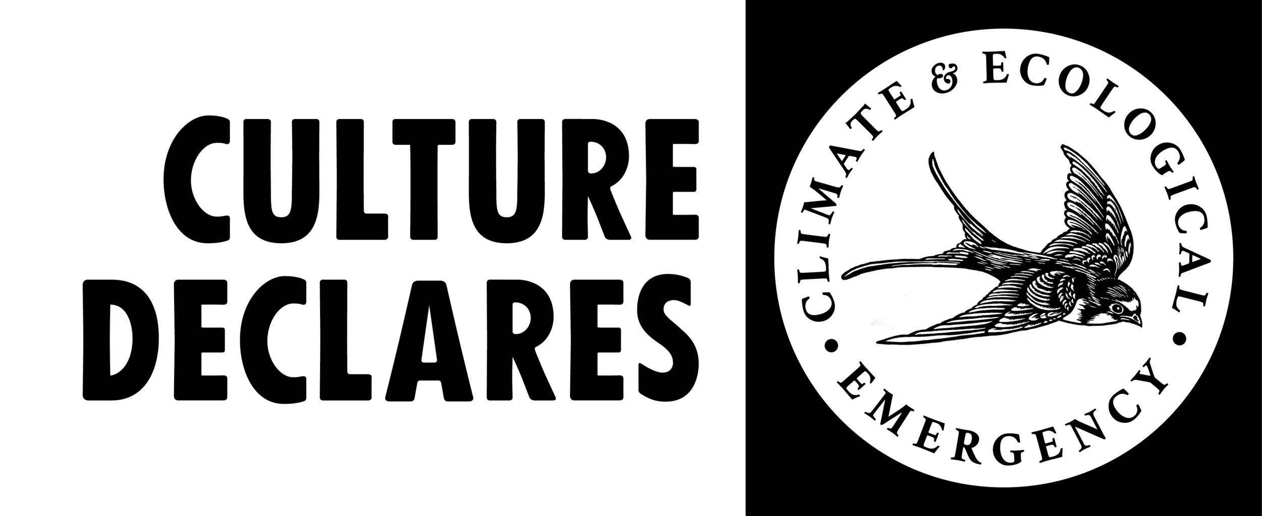 CultureDeclaresKite-HORIZ-BW-LRG.png