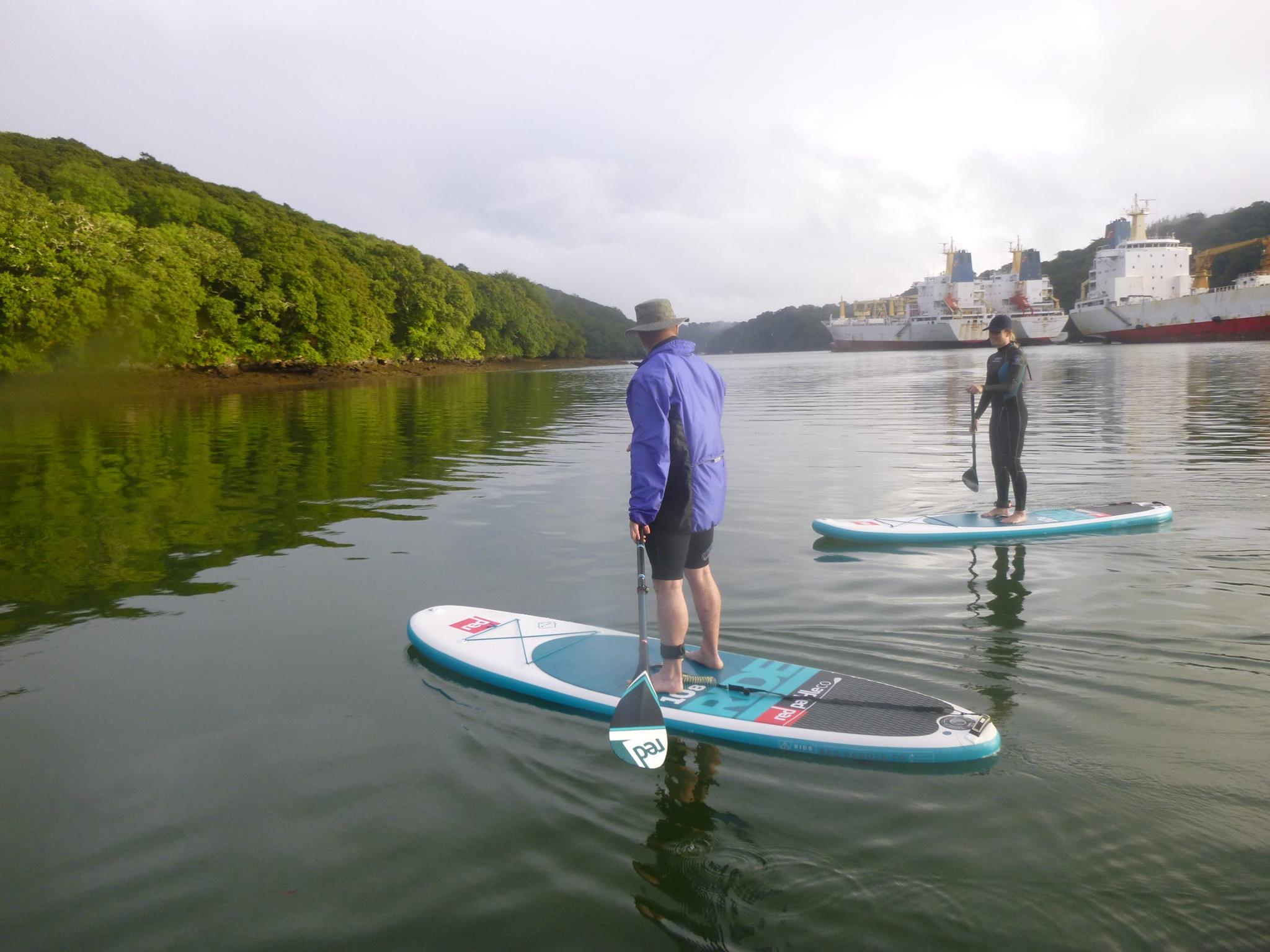 learn-to-sup