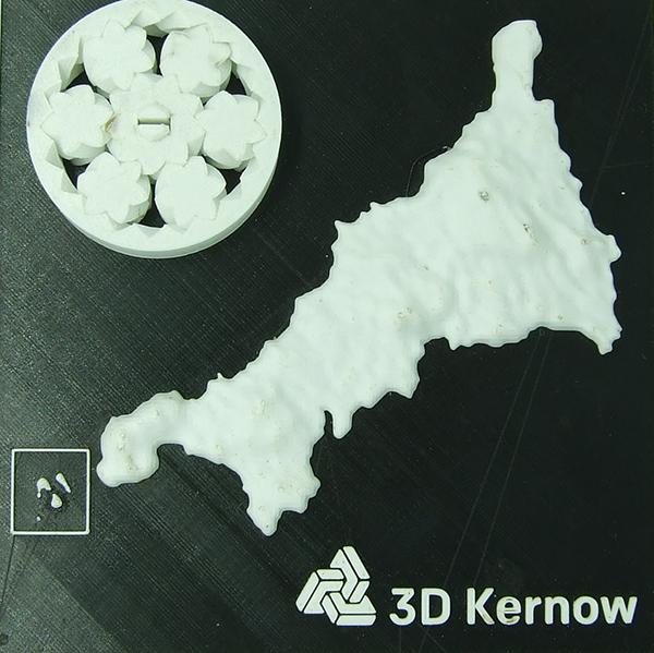 PP 3DK logo.jpg