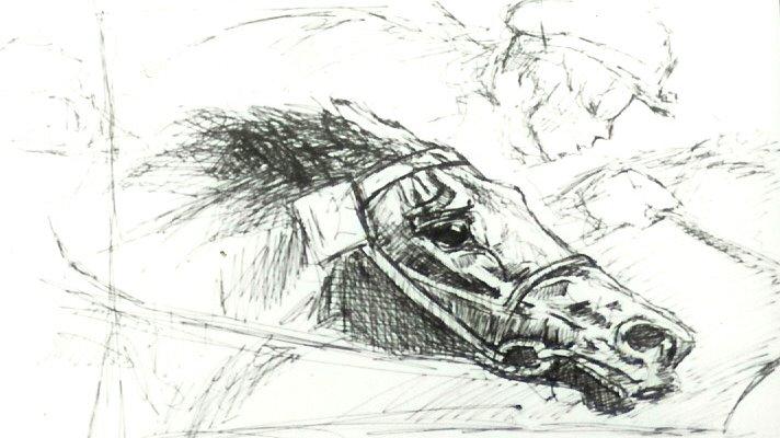 racehorse1 copy.jpg
