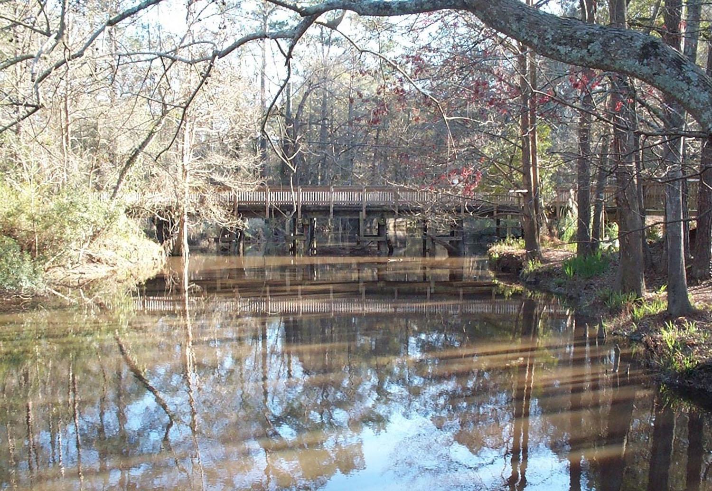 bayou liberty Watershed Management Plan.jpg