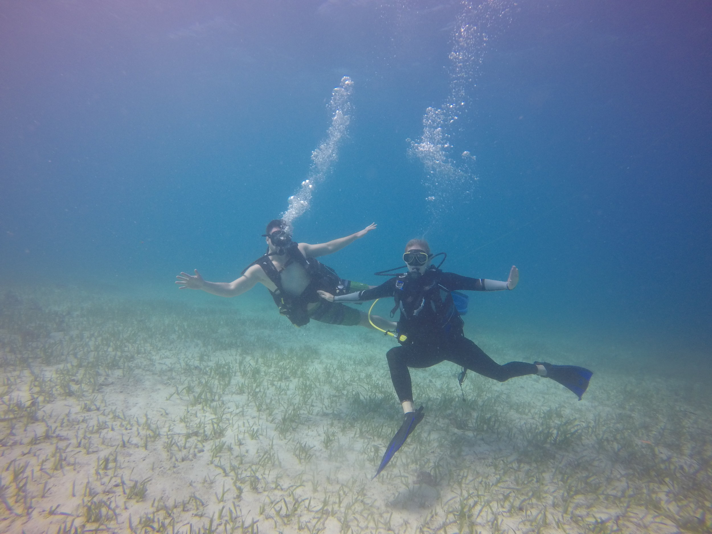 Discover SCUBA - While not an actual SCUBA certification, the Discover SCUBA experience allows you to give diving a try. Learn how to use SCUBA equipment in shallow water with a quick introduction to basic SCUBA skills. Then go on an actual SCUBA dive along the Belize Barrier Reef.