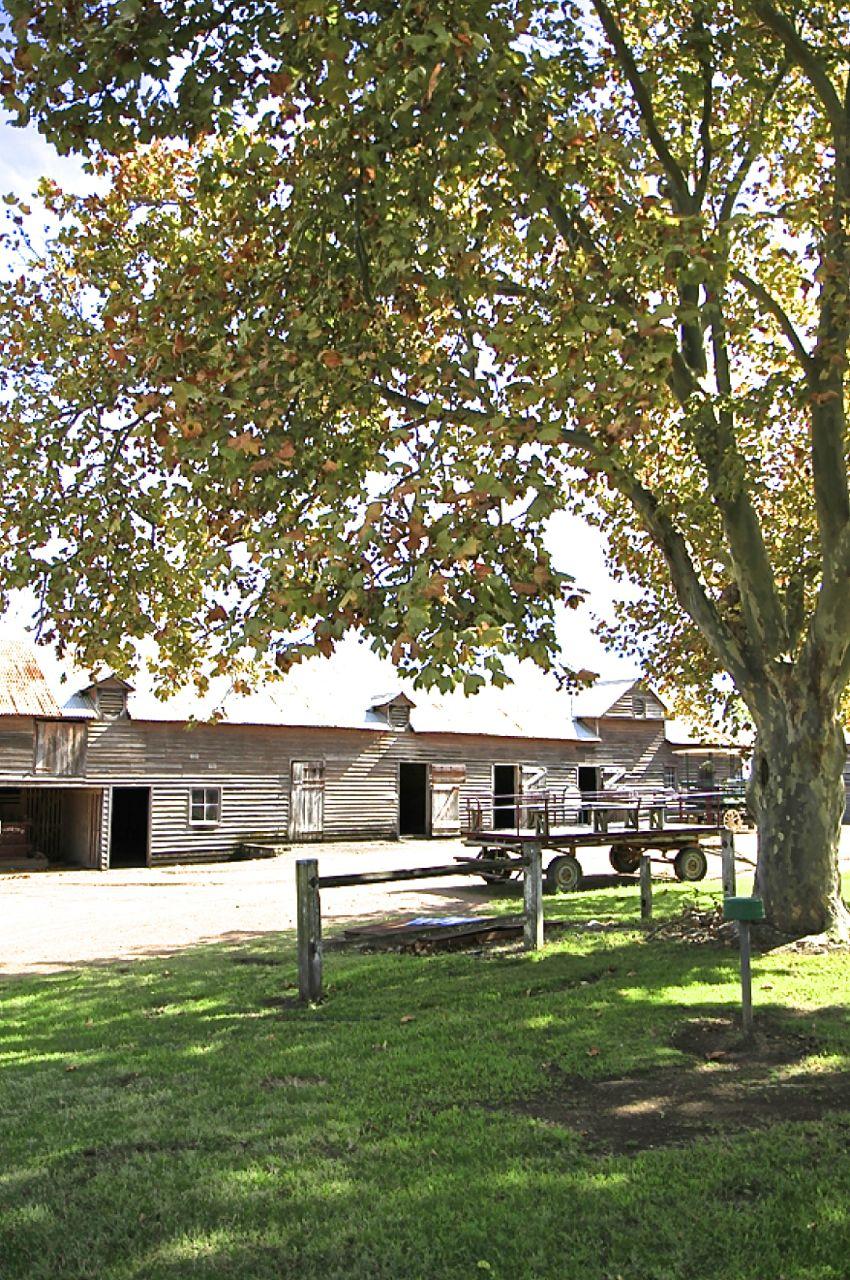 Belgenny Farm, NSW, Australia
