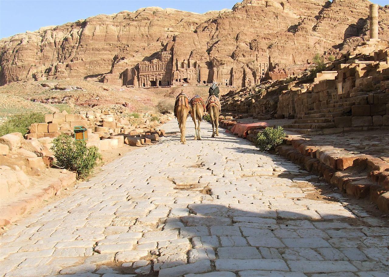 Camel Rides in Petra, Jordan