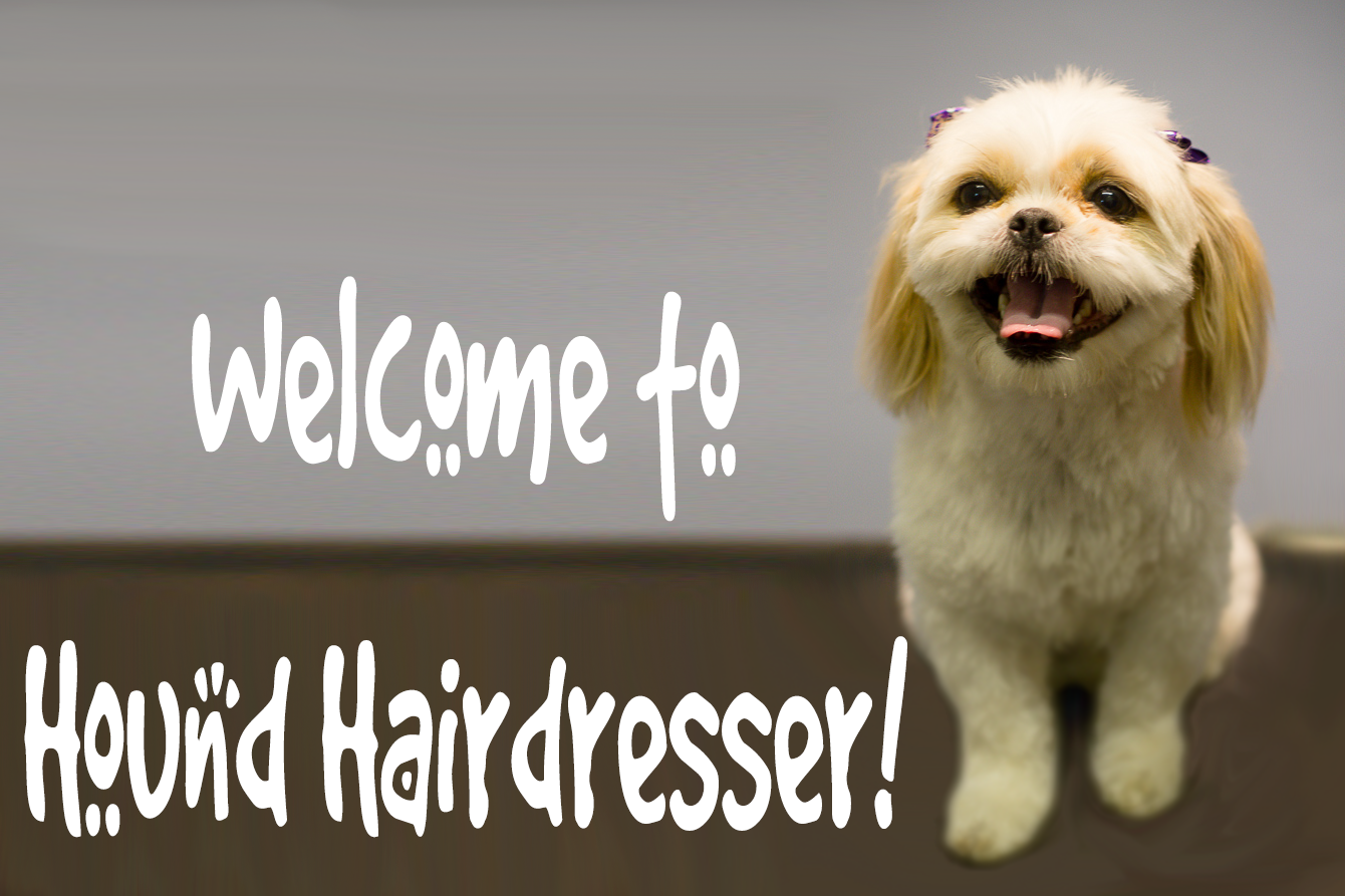 Dog Grooming & Dog Wash Bunbury