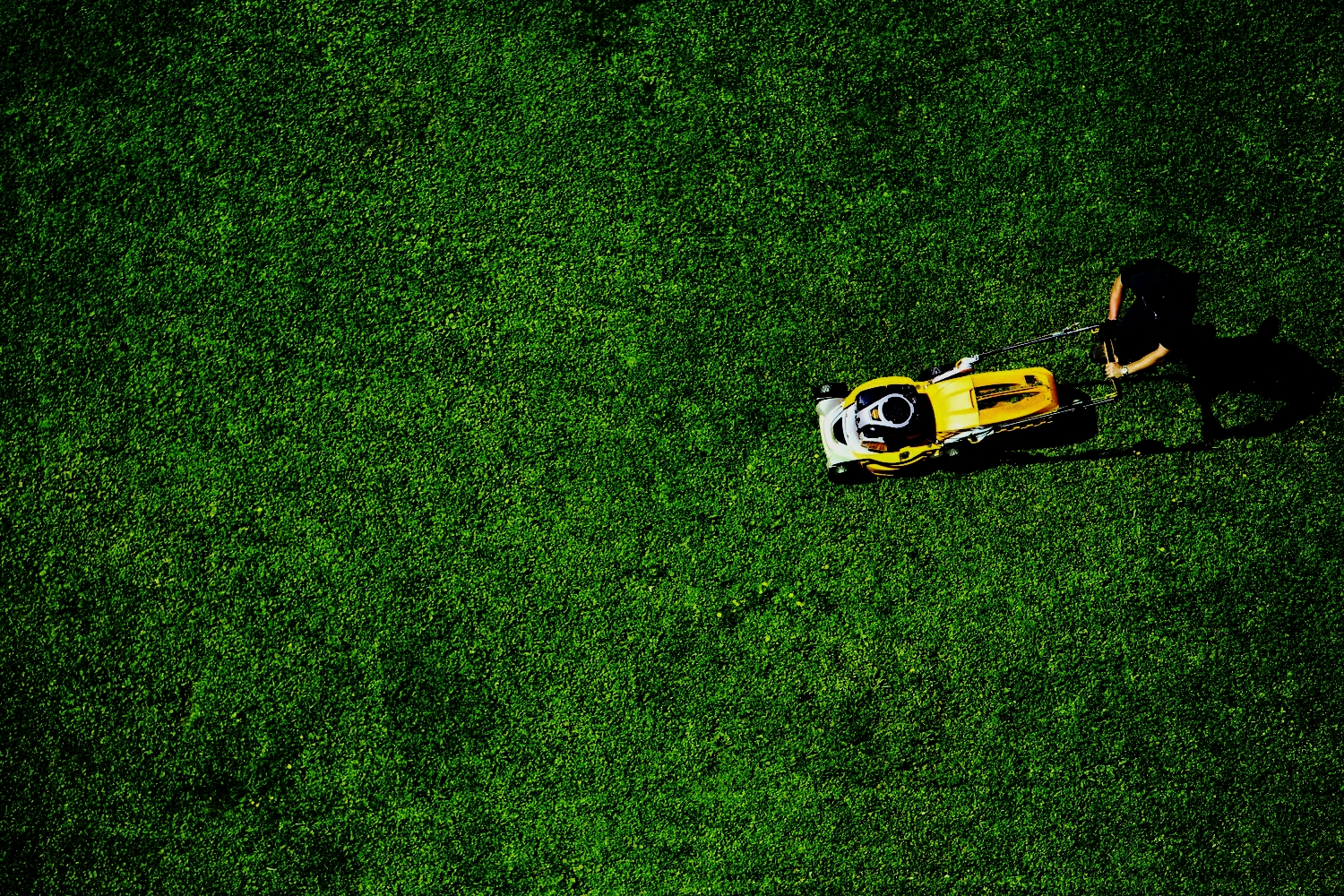 AIRMOW   Being last to market was used as a strong  newshook for this on-demand lawn mowing service. We highlighted Airmow's world first satellite technology as the necessary innovation to make it happen.  B2B press saw contractor registrations exceed client expectations by 250%.