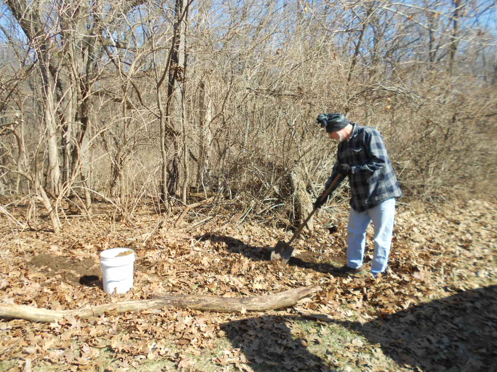 Photos Chestnut Trees Planted at IWL 3-28-15 Mike Hay (Prep dig for Tree 2jcs 001.jpg