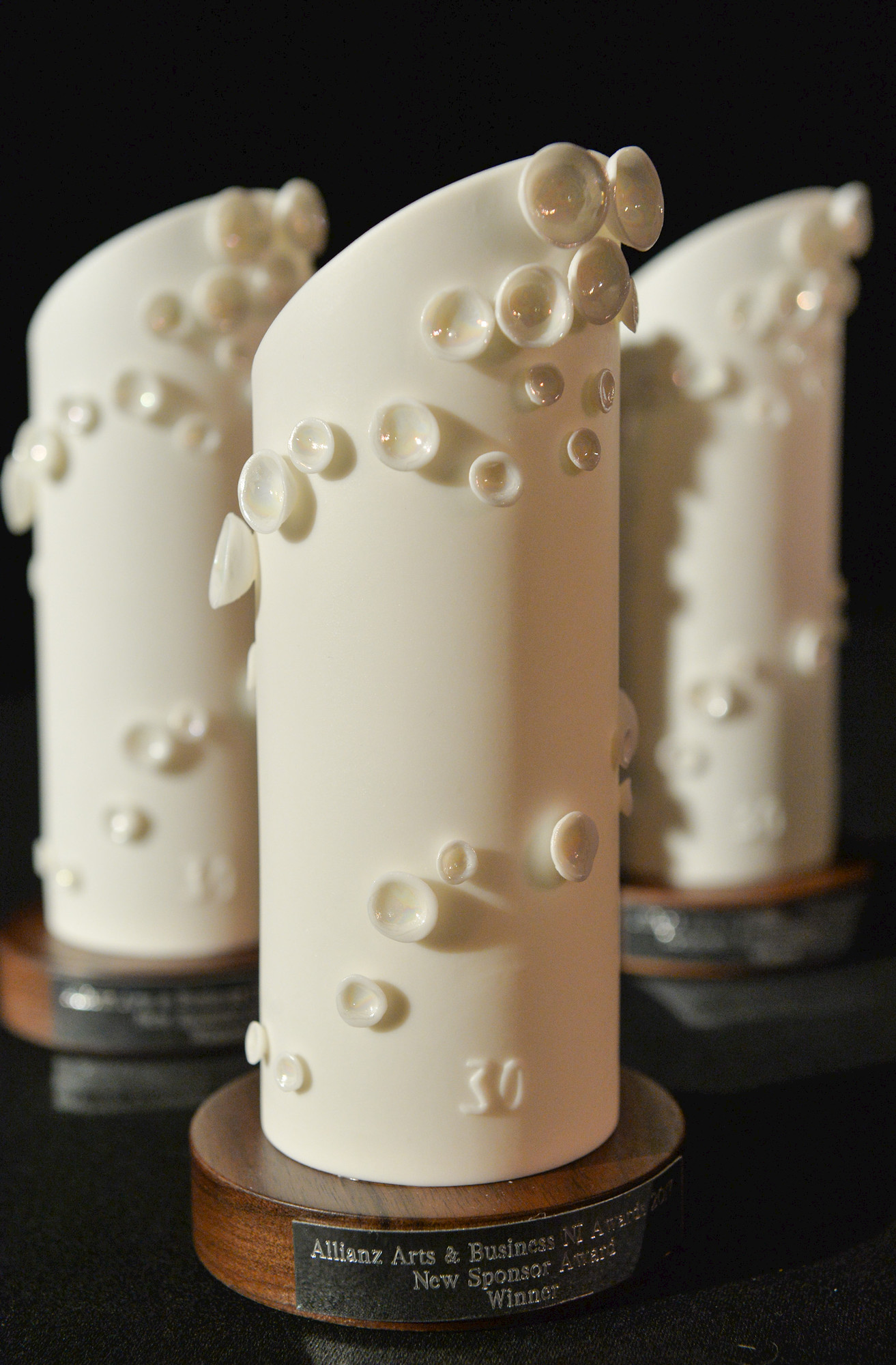 Allianz A&B NI Awards '17 - Wendy Ward award pieces.jpg