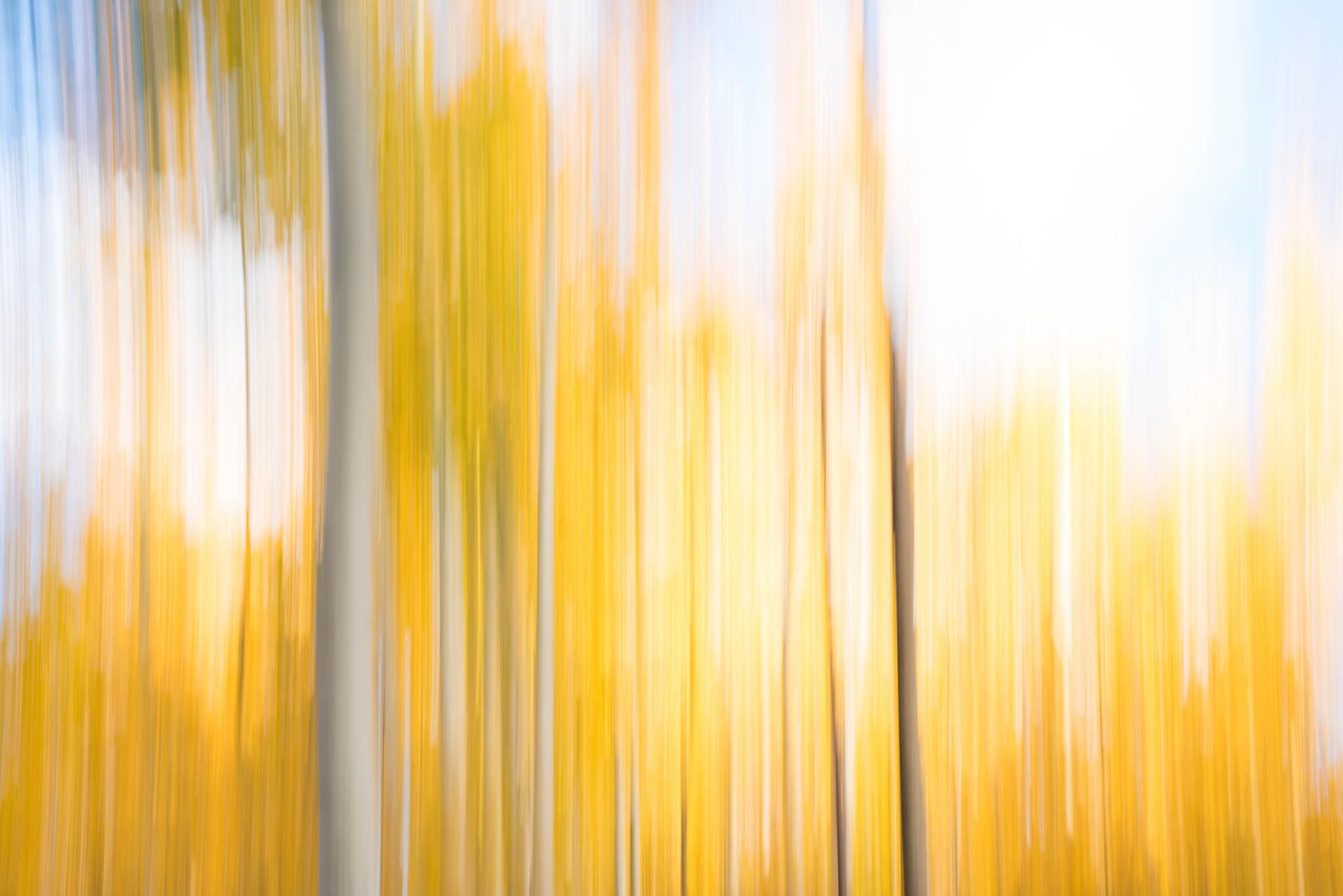 Aspen-Lines-9.jpg