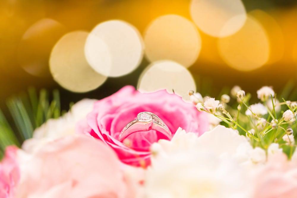 798-best-western-dartmouth-wedding--.jpg