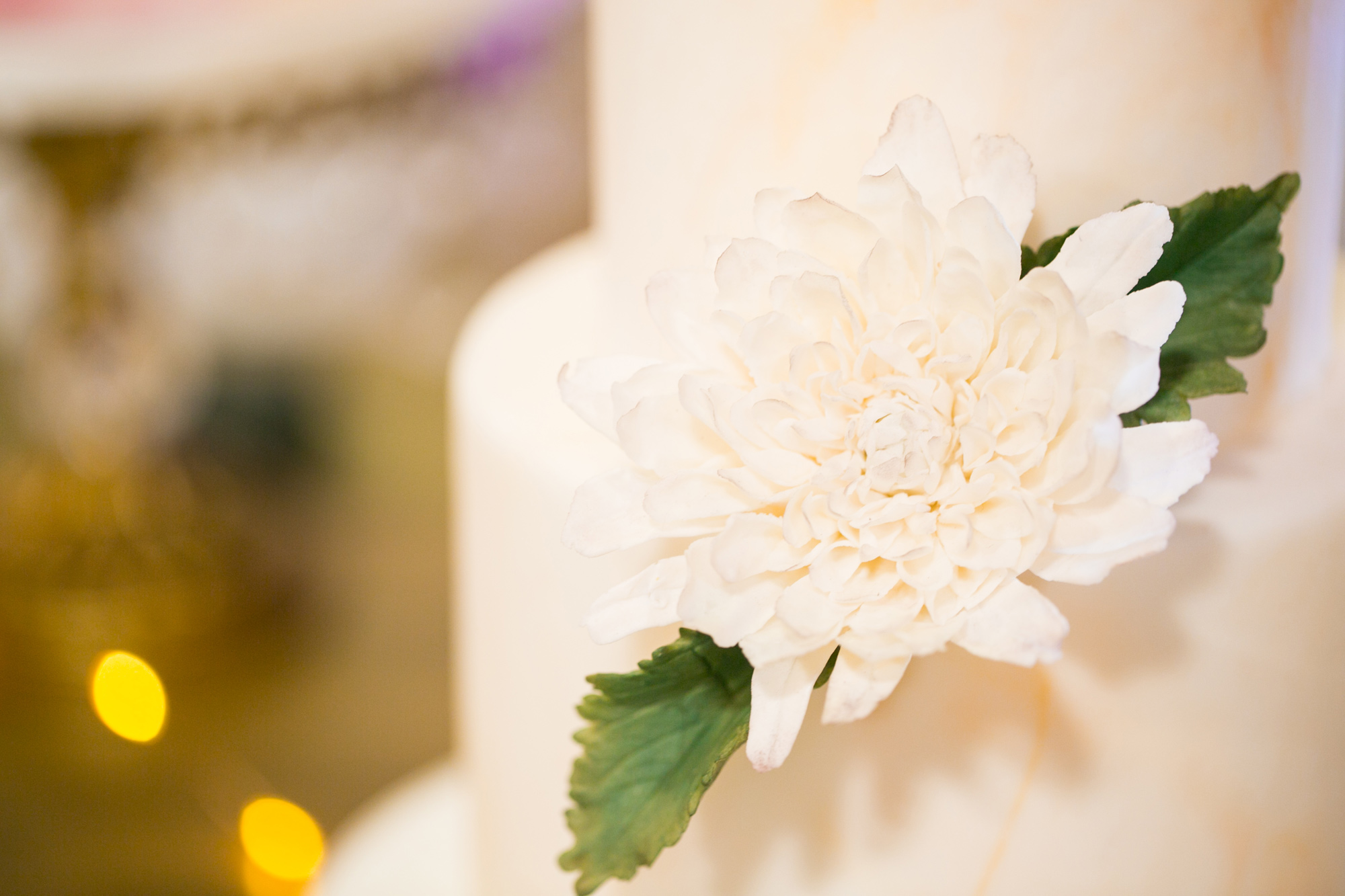 835-halifax-indie-wedding-social.jpg