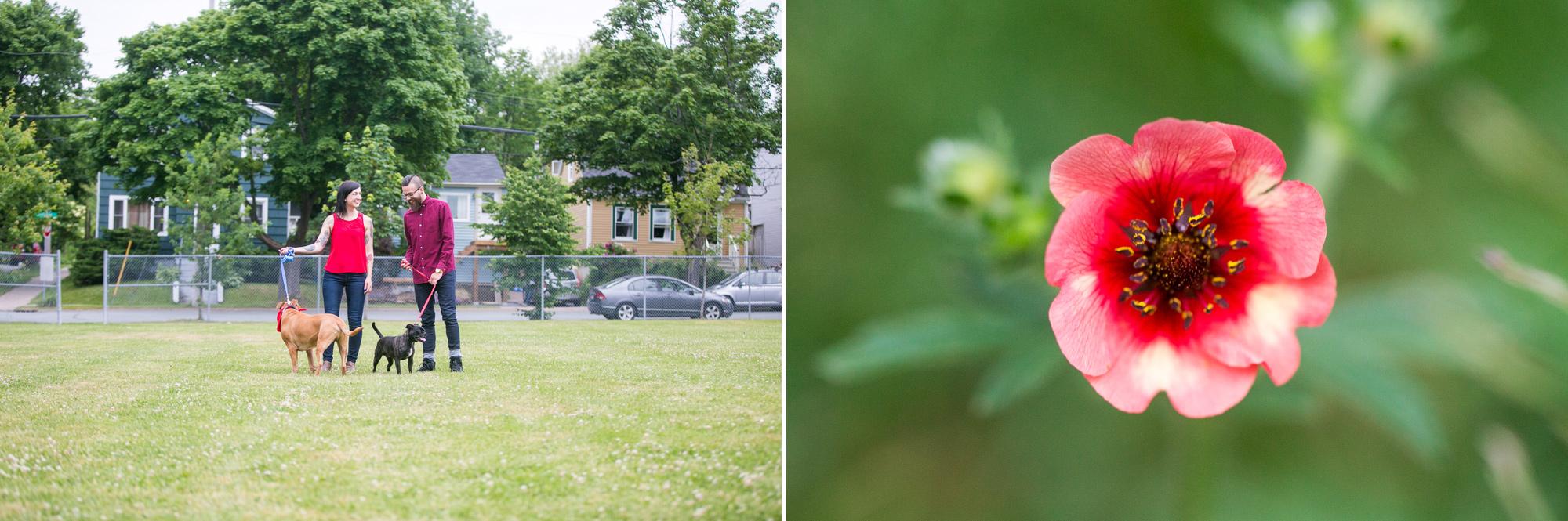 656-halifax-engagement-photography-.jpg