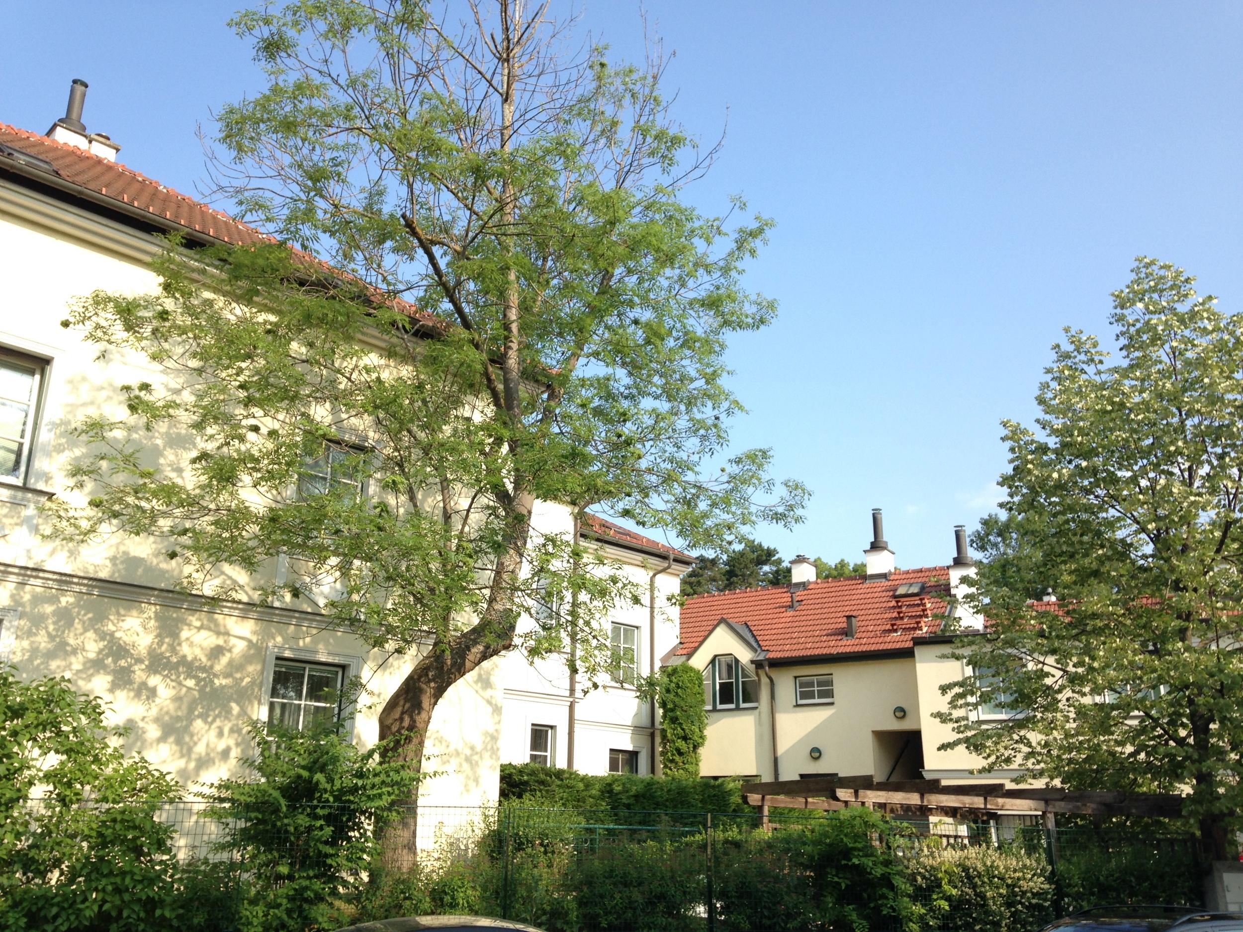 Hochbergstraße 3.JPG