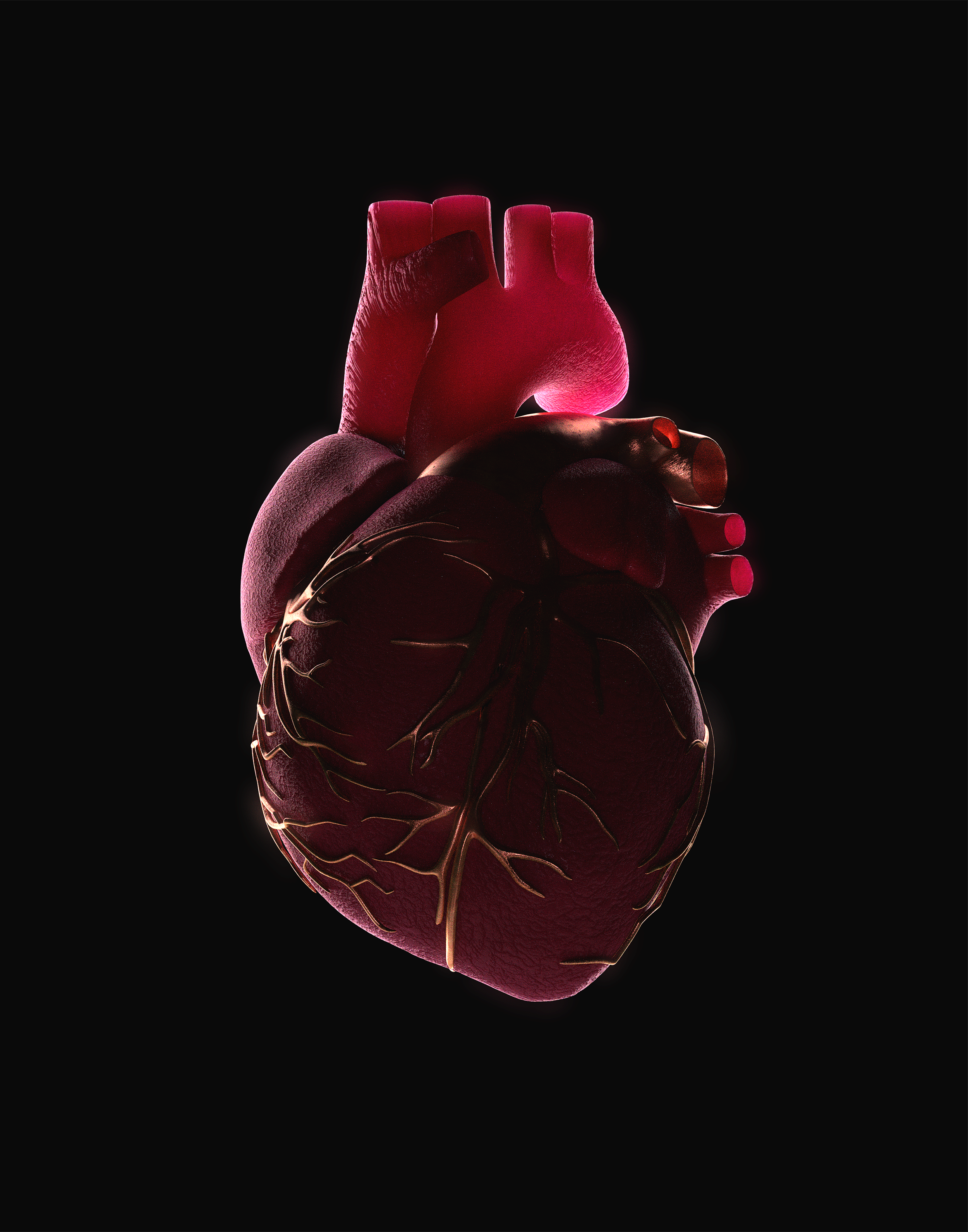 Heart_00000.png