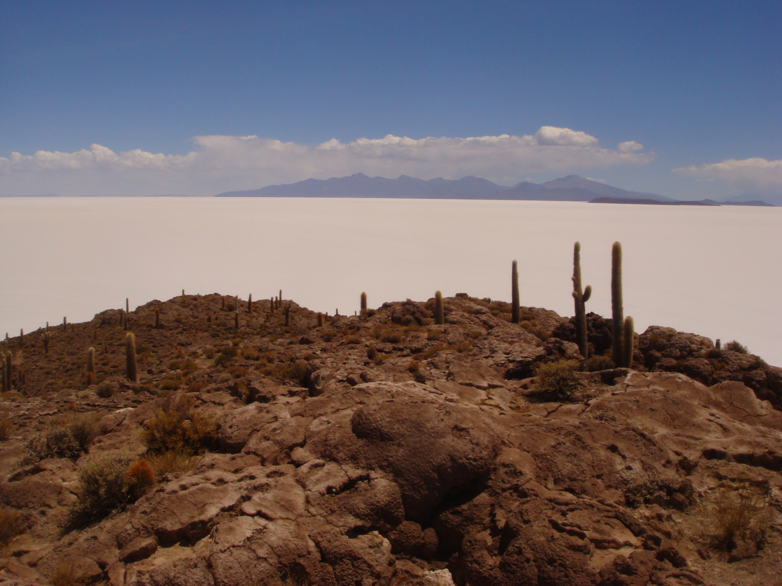 M&R Bolivia salt.JPG