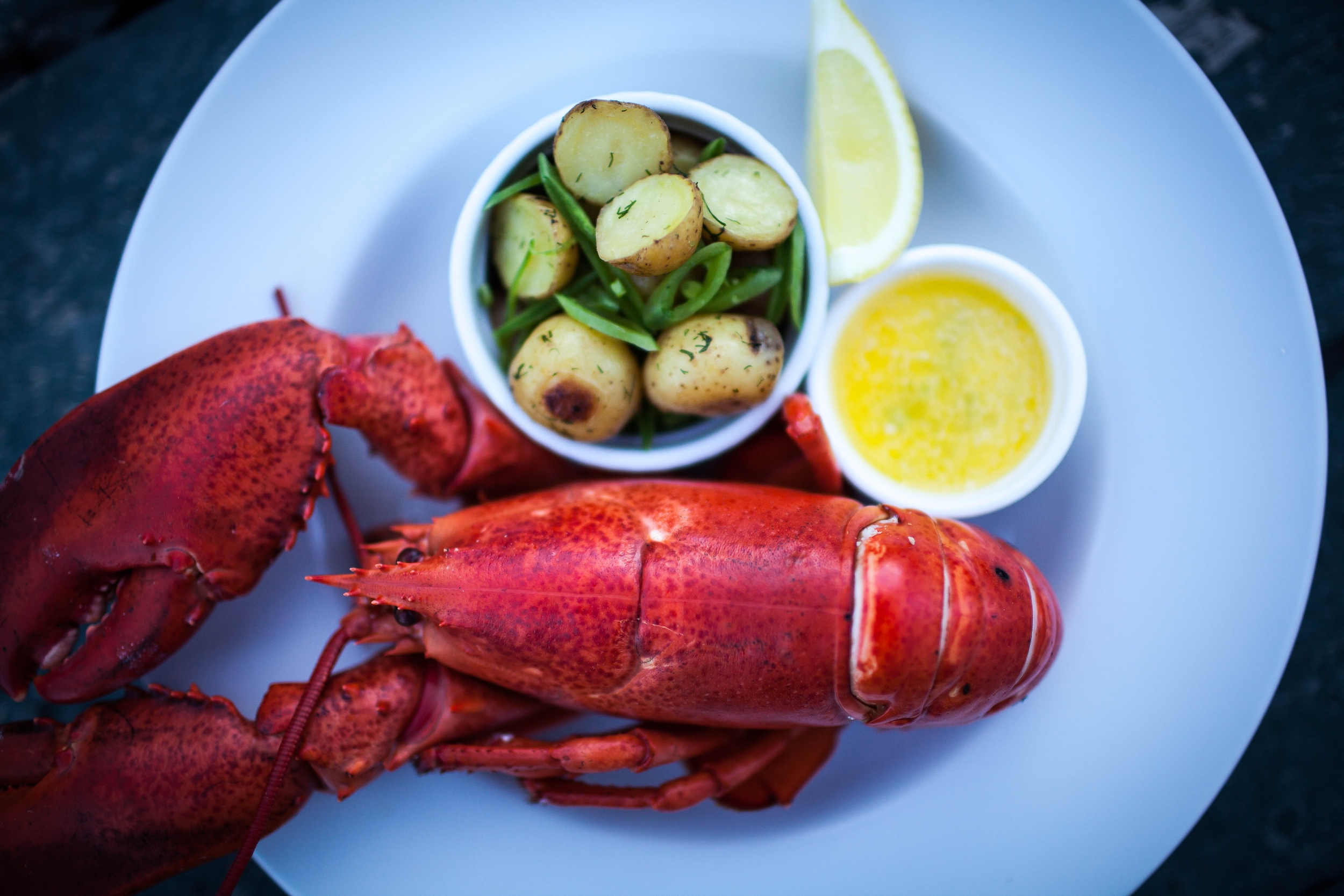 Fisher's Lobster-1.jpg