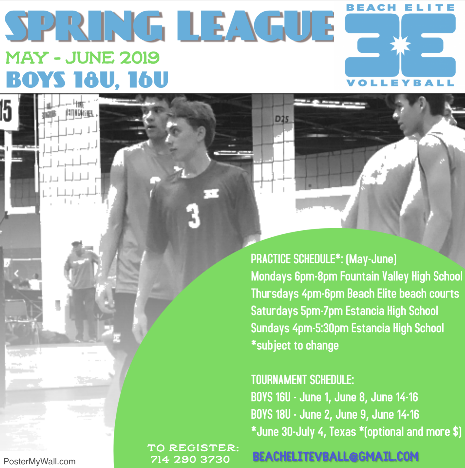 boys spring volleyball 2019.png