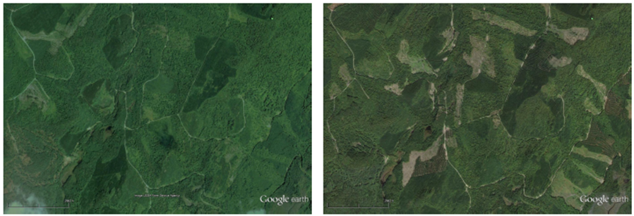 Figure      SEQ Figure \* ARABIC    2    . Virgin paper production requires timber harvesting across large areas of forests, as seen in this satellite image of a site in central Maine within the fiber basket of the Somerset Mill. Left: The site in September 2007. Right: The same site in September 2013. Timber harvesting causes disturbances to the forests, resulting in forest carbon storage loss and negative impacts on biomes and key species. Source: SCS Global Services' LCA Study.