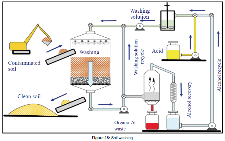 Caption: Source: Godheja et al (2017). Xenobiotic Compounds Present in Soil and Water: A Review on Remediation Strategies. [8]