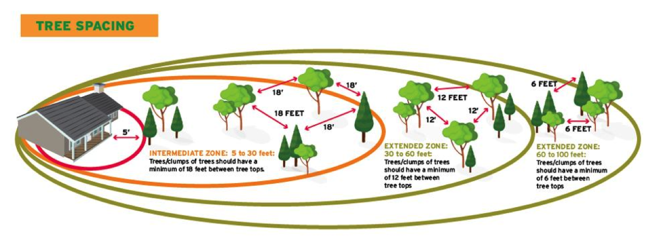 Image demonstrating tree / shrub spacing from the National Fire Protection Association