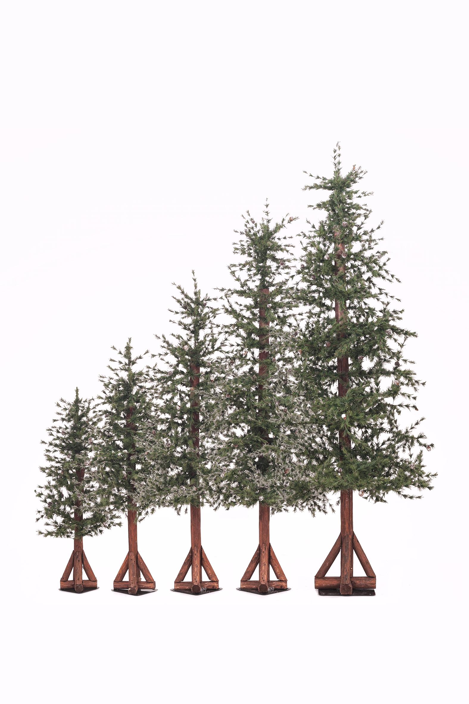 set de pinos de navidad
