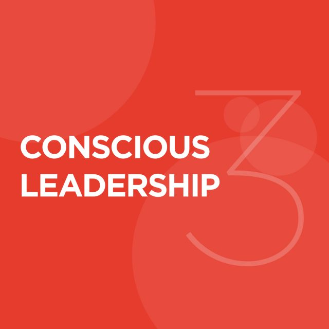 "3. Conscious Leadership - Conscious businesses cannot exist without Conscious Leaders. Conscious Leaders focus on ""we,"" rather than ""me.""They inspire positive transformation and bring out the best in those around them.They keep the business focused on its Higher Purpose, and support the people within the organization to create value for all of the organization's stakeholders.They recognize the integral role of culture and purposefully cultivate a Conscious Culture of trust and care."