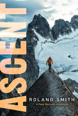 Peak #3 - Ascent.jpg
