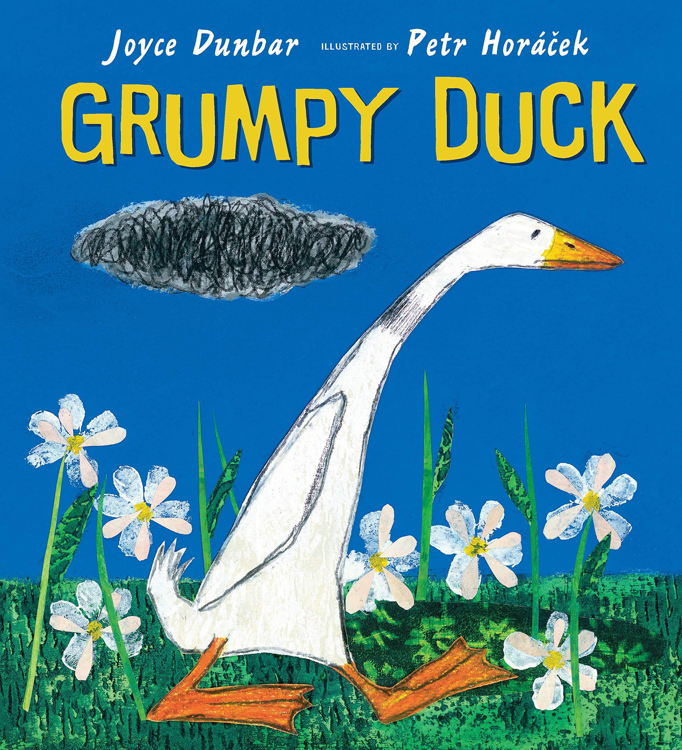 Grumpy Duck.jpg