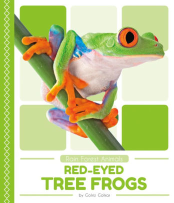 Red-Eyed Tree Frogs.jpg