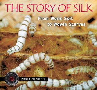 The Story of Silk.jpg