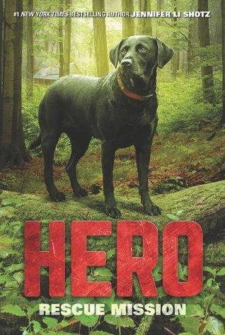 Hero Rescue Mission.jpg