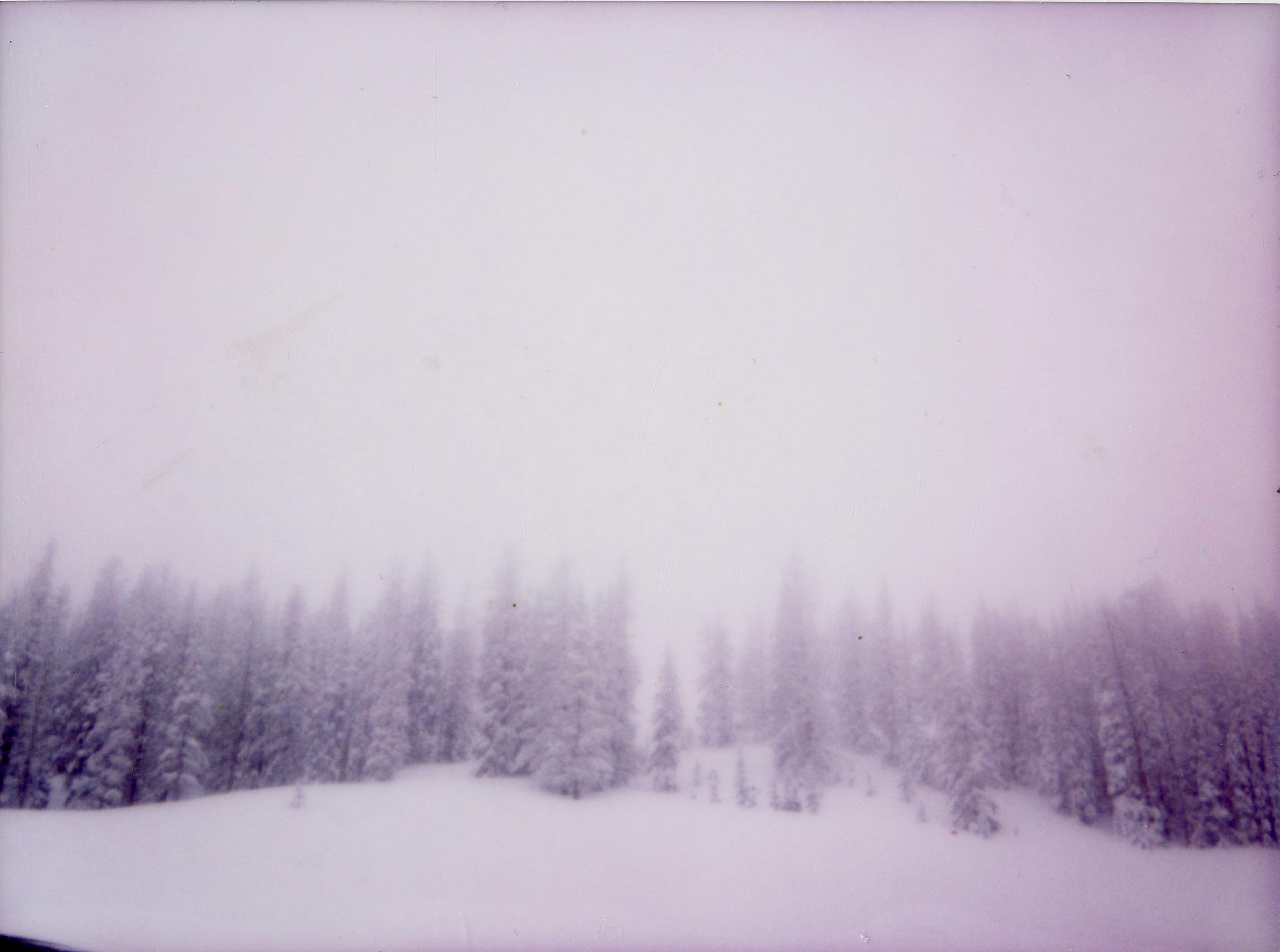 white003.jpg