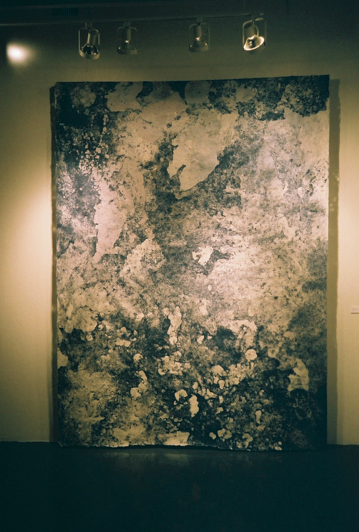 Hong Hong /  All Night Dream-Sowing I, 2014  / Poured Kozo / 12 ft x 8 ft