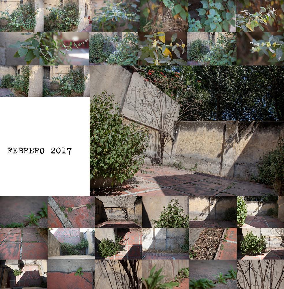 febrero bordes  .jpg