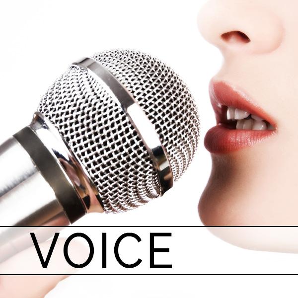 Voice 001.jpg