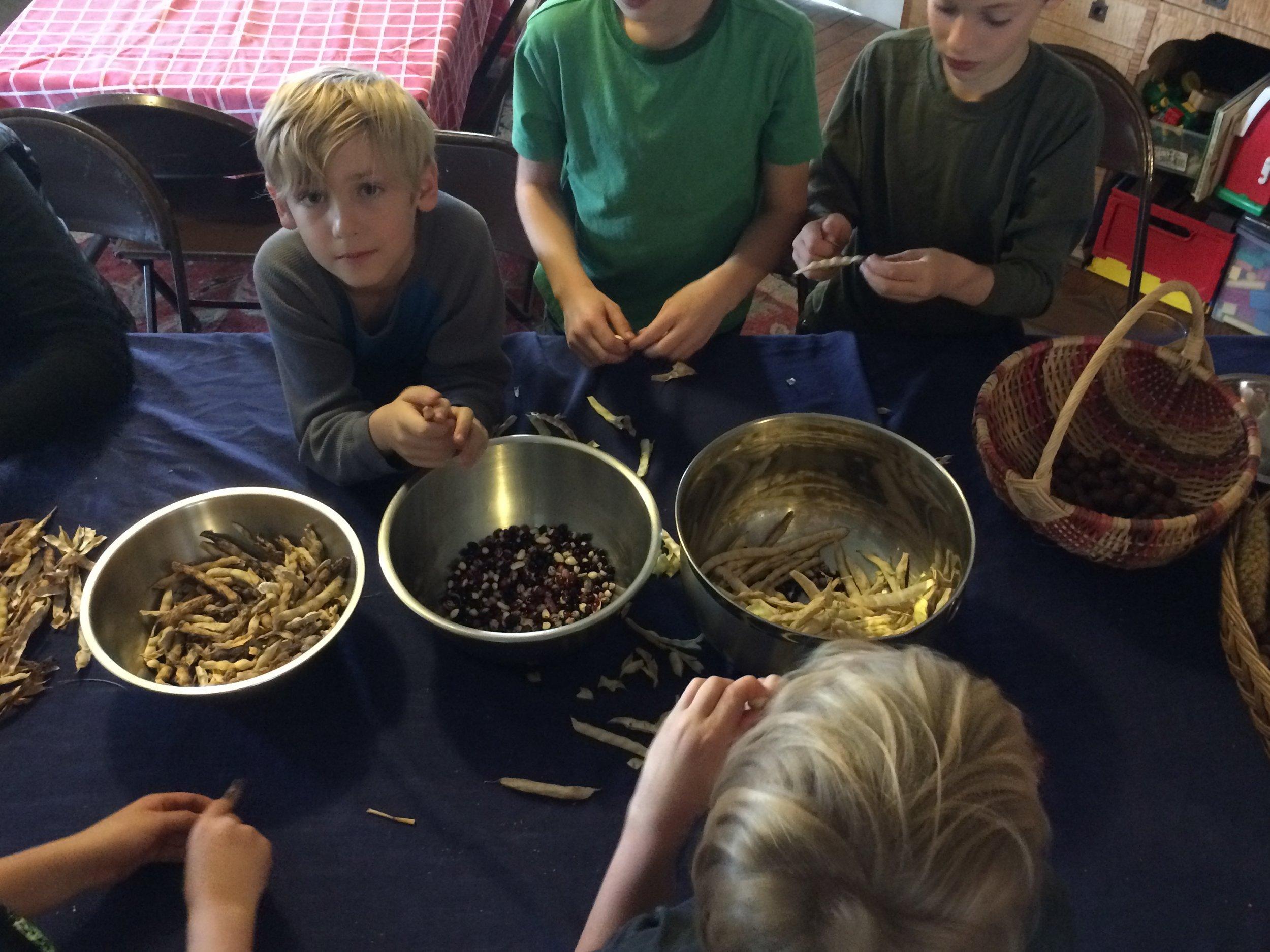 School Group Students help sort seeds for winter storage