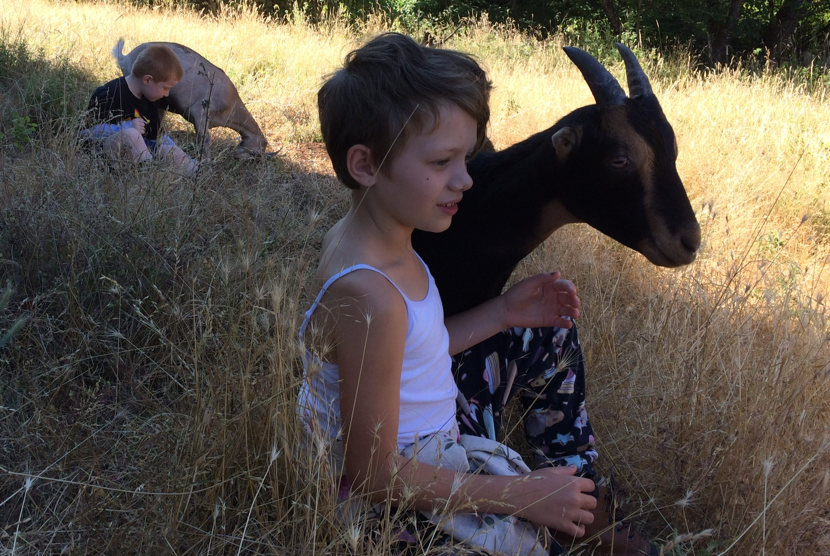 time with goats.png